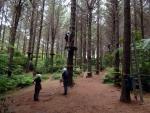 Supervised adventure activity - Glenbervie Adventure Forest