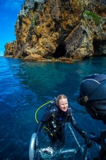 Spend the day diving at the Poor Knights Islands (northlandnz.com)