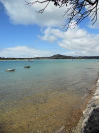 Ngunguru Estuary at High Tide