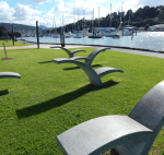 Concrete Seagull Sculptures on the Town Basin Art Trail in Whangarei