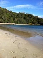 Whale Bay - Tutukaka Coast