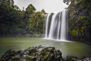 Whangarei Falls Waterfall