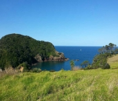 View from the Tutukaka Lighthouse Walkway