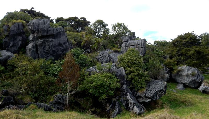 Waro-limestone-reserve-3