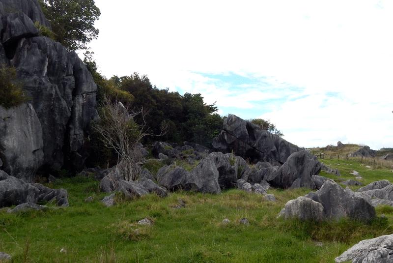 whangarei-limestone-walk