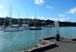 Whale Tail on the waterfront - part of the Whangarei Art Trail