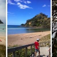 Tutukaka Coast Beaches & Whangarei Beaches