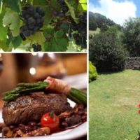 Whangarei Accommodation – Swimming Pool & Meals