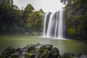 whangarei-falls-waterfall